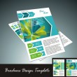 Stock Vector: Brochure design element, vector illustartion