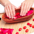 Hands Spa. Manicure concept — Stock Photo #12140821
