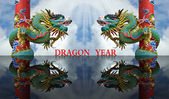 Dragon year — Stock Photo