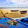 Old Boats — Stock Photo