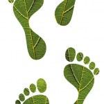 Save nature concept - green leaf human footprints — Stock Photo