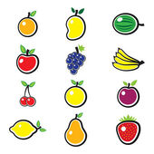Collection of fresh, colorful and organic summer fruits illustra — Stock Vector