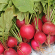 Fresh pink-red colored round radish heap collected from organi — Stock Photo #12480327