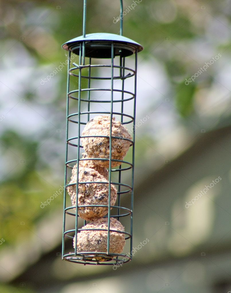 A hanging bird feeder in the garden  — Stock Photo #10786330