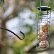 Bird feeder — Stock Photo #11480217