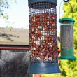 Stock Photo: Bird feeders