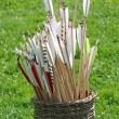 Basket of arrows — Stock Photo