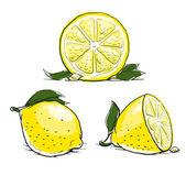 Ripe lemon with leaf. vintage set. — Stock Vector