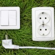 Stock Photo: Power receptacle and light switch on a green grass
