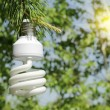 Energy saving light bulb on a branch of pine — Stock Photo