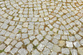 Paving stones — Stock Photo