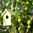 Bird house — Stock Photo #11768745