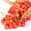 Cherries in basket - Stock Photo