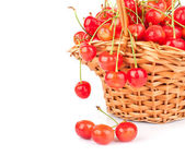 Cherries in basket — Stock Photo
