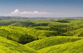 Spring hills — 图库照片