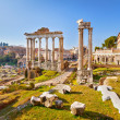 Roman ruins in Rome, Forum — Stock Photo #11608368