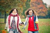 две молодая женщина, ходить в осенний парк — Стоковое фото