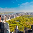 View on central park - Stock Photo
