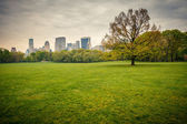 Central park at rainy day — Stockfoto