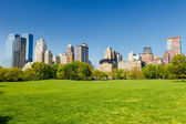 Central park at sunny day — Stockfoto