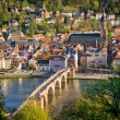 Heidelberg at spring — Stock Photo