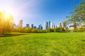Central park at sunny day — Stock Photo