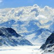 Aletsch alps glacier Switzerland — Stock Photo #11145662