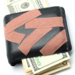 Stock Photo: Money in Wallet with Medical Plaster