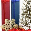 Red and blue holiday box with christmas tree and ornament — Stock Photo