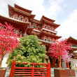 Singapore BuddhTooth Relic Temple — Stock Photo #11162663