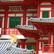 BuddhTooth Relic Temple in ChinTown Singapore, closeup — Stock Photo #11162683