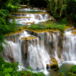 Постер, плакат: Grand Tropical Waterfall
