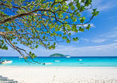 White sand tropical beach — Stock Photo