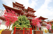 Singapore buddha tooth relic temple — Stockfoto