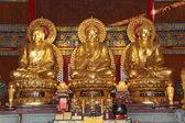 Thai China Buddha Image — Stock Photo