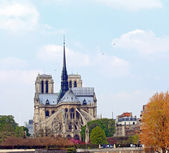 Cathedral Notre Dame Paris — Stock Photo
