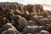 Paisaje de roca de gran cañón de panqueque en costa oeste playa nueva z — Foto de Stock