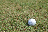 Perspective of golf ball green grass — Stock Photo