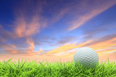 Golf on grass — Stock Photo
