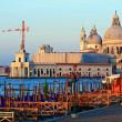 圣塔玛丽亚 · 德拉礼炮大运河威尼斯意大利 — 图库照片