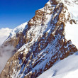 Part of Swiss Alpine Alps at Jungfraujoch in Interlaken Switzerland, Vertical — Stock Photo #11220208