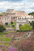 Colosseum from roman forum — Stock Photo
