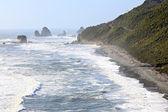Línea costera de nueva zelanda — Foto de Stock