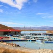 Salmon Farm — Stock Photo #11239710