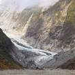 Franz Josef Glacier — Stock Photo #11239725