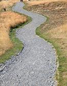 кривой путь дорога — Стоковое фото