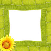 Leaf Texture Frame — Stock Photo