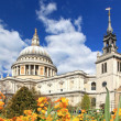 St. Paul Cathedral with Garden — Stock Photo #11460157