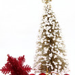 Christmas decoration — Stock Photo #11460255