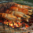 Grill Black Tiger Prawn — Stock Photo